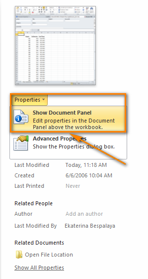 Choose 'Show Document Panel' from the properties drop-down list to display the panel