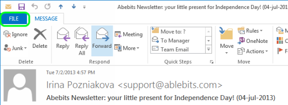 Open the needed email and click on the File option
